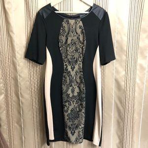 NWOT Sexy & Elegant Scalloped Side Dress
